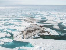 科学者は「世界最北端の島」を発見します
