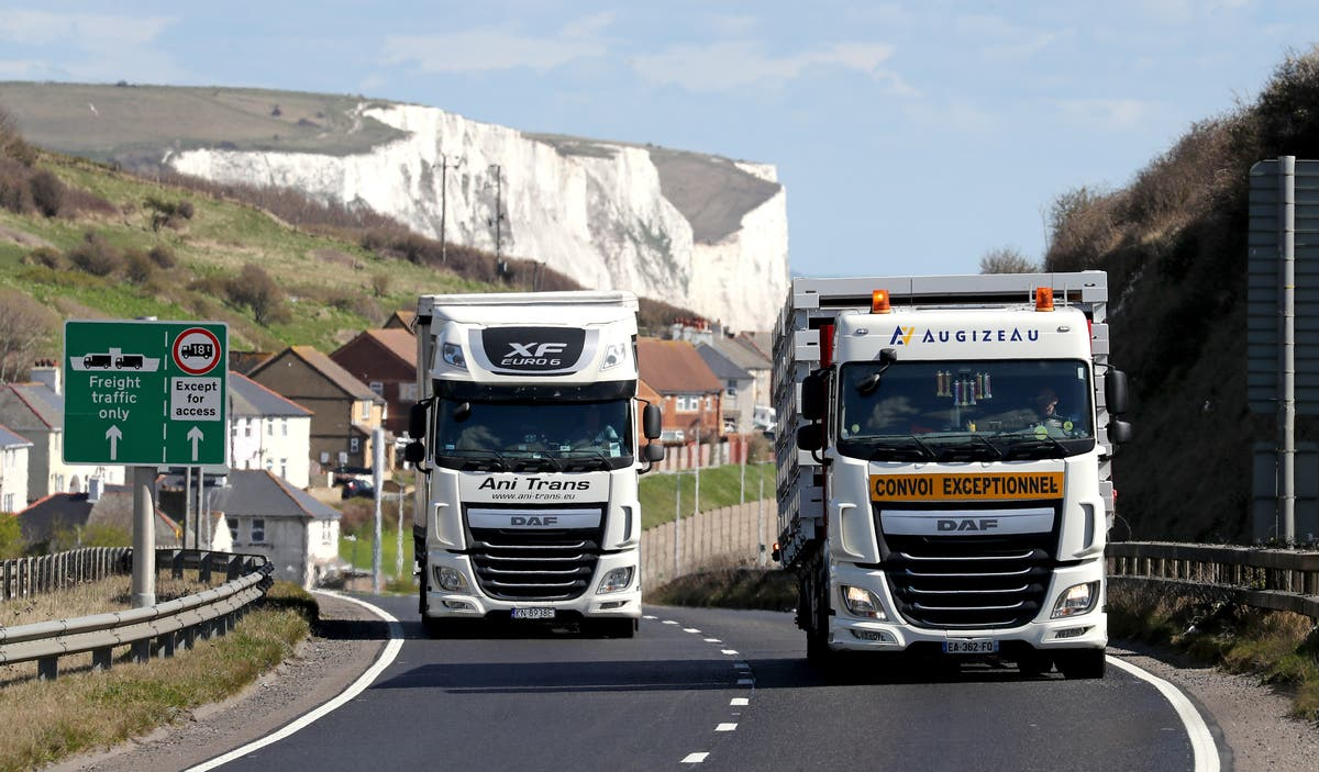 'Insane' to stop foreign lorry drivers working in UK, says Next boss