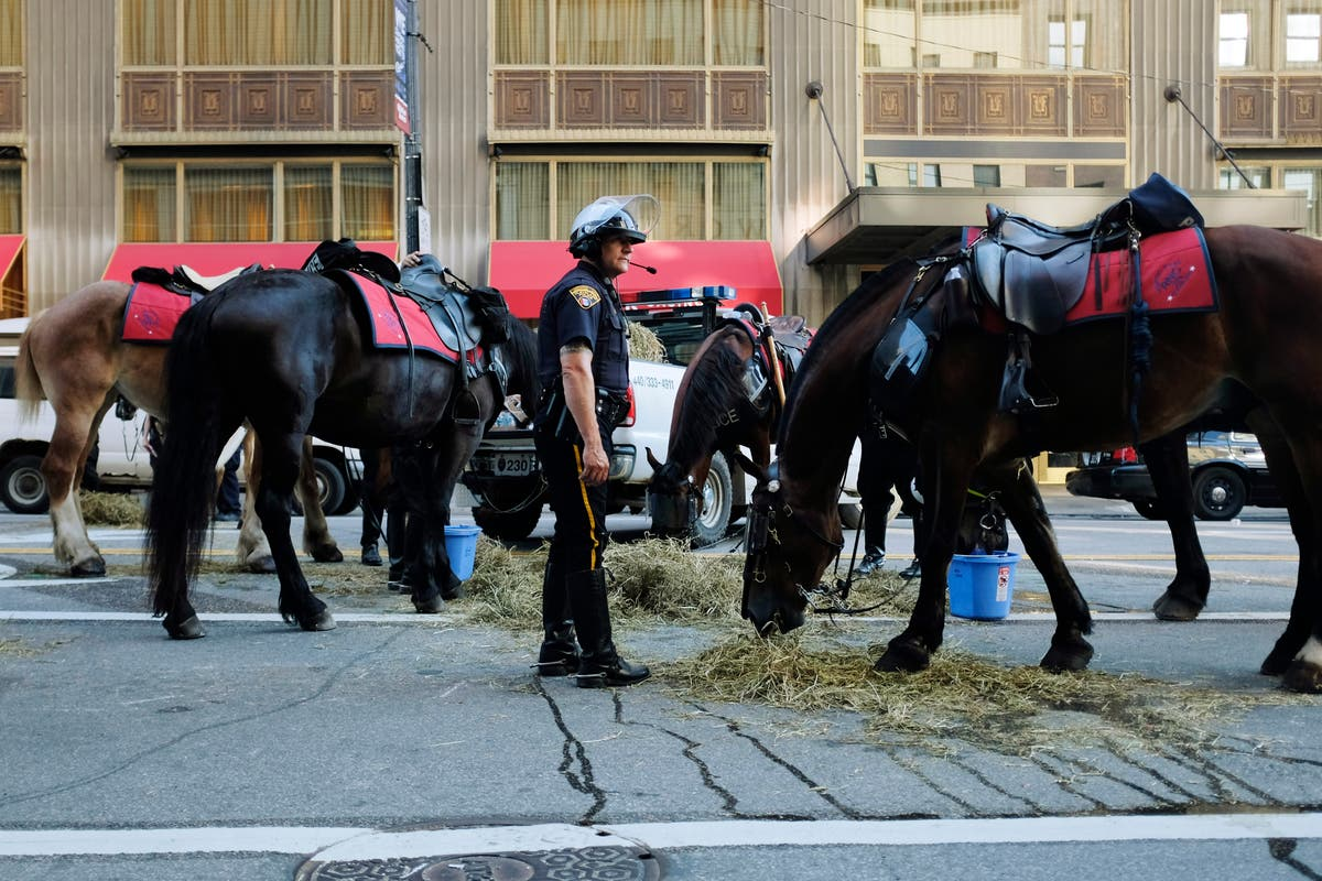 Ohio judge rules Covid patient must get unsafe horse drug Ivermectin