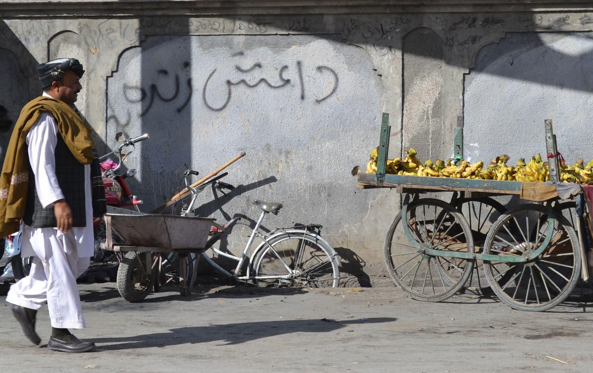 Pakistan says 11 Isis militants killed in raid