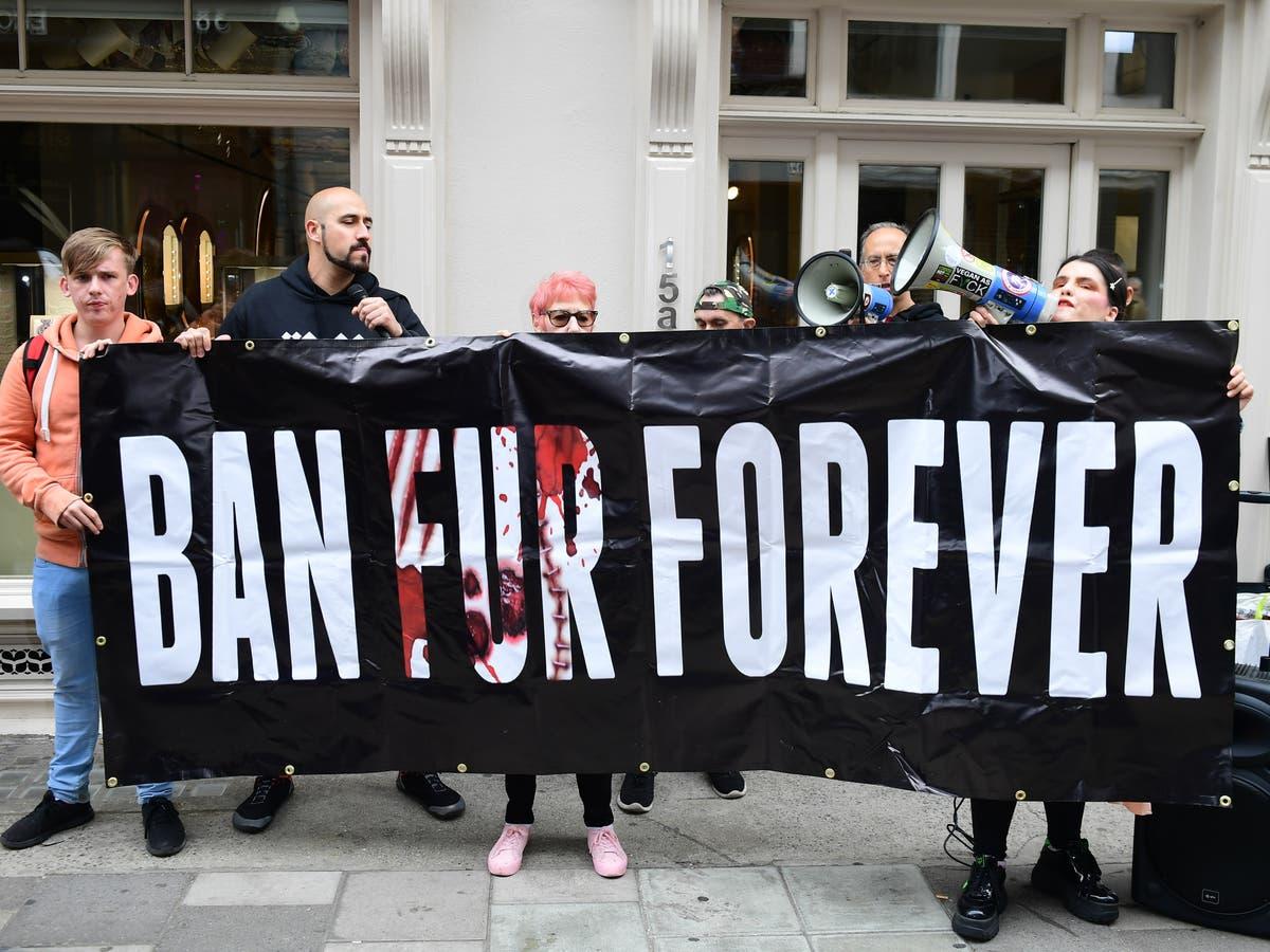 100 MPs and peers demand ban on 'cruel' animal fur sales