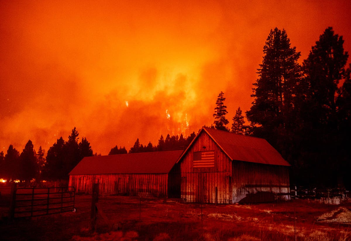 California closes all national forests ahead of Labor Day due to wildfires