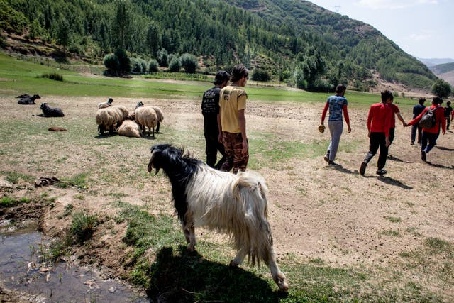 A group of Afghan refugees are seen tracking from the Iranian border to the town of Tatvan