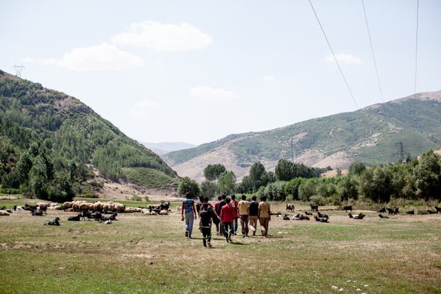 A group of Afghan refugees are seen tracking from the Iranian border to the town of Tatvan, a distance of over 200km