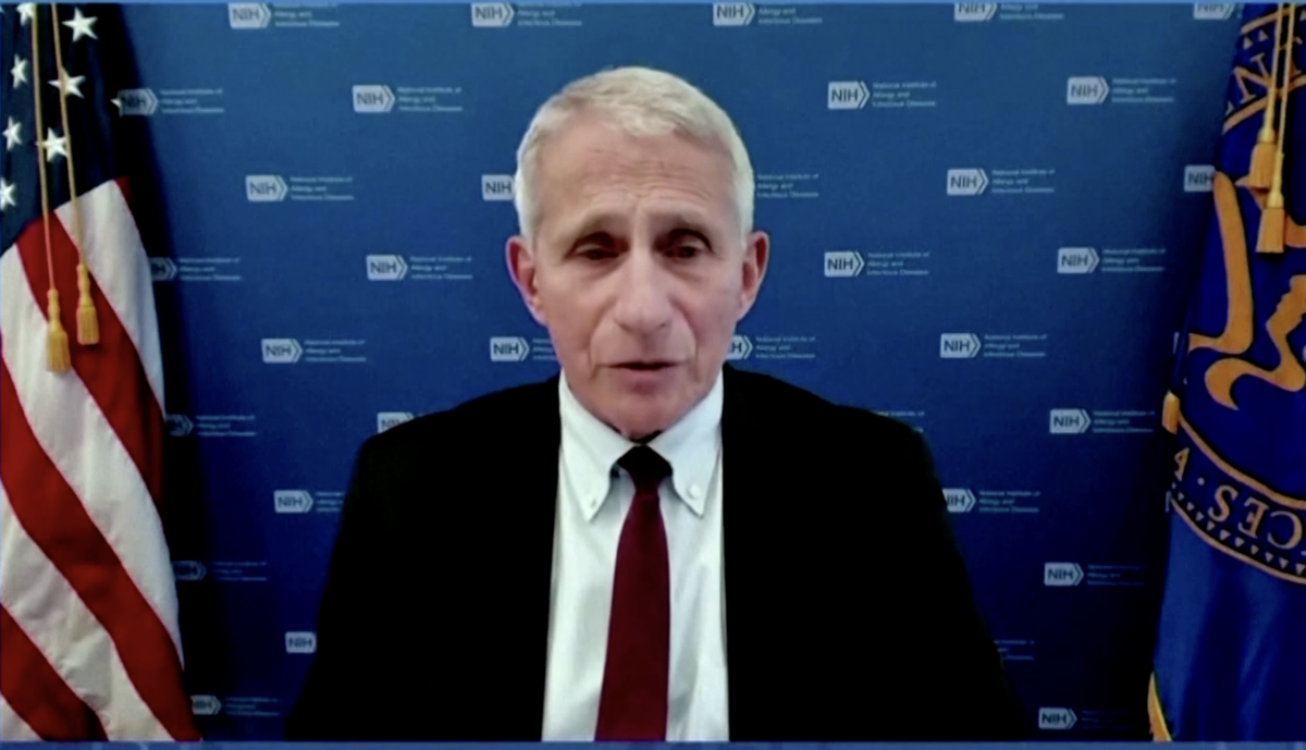 Fauci says Mu variant of Covid not an immediate threat to US