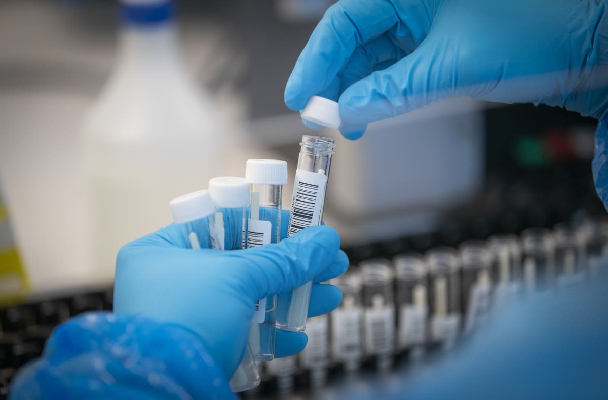 Heathrow PCR test certified within 103 minute