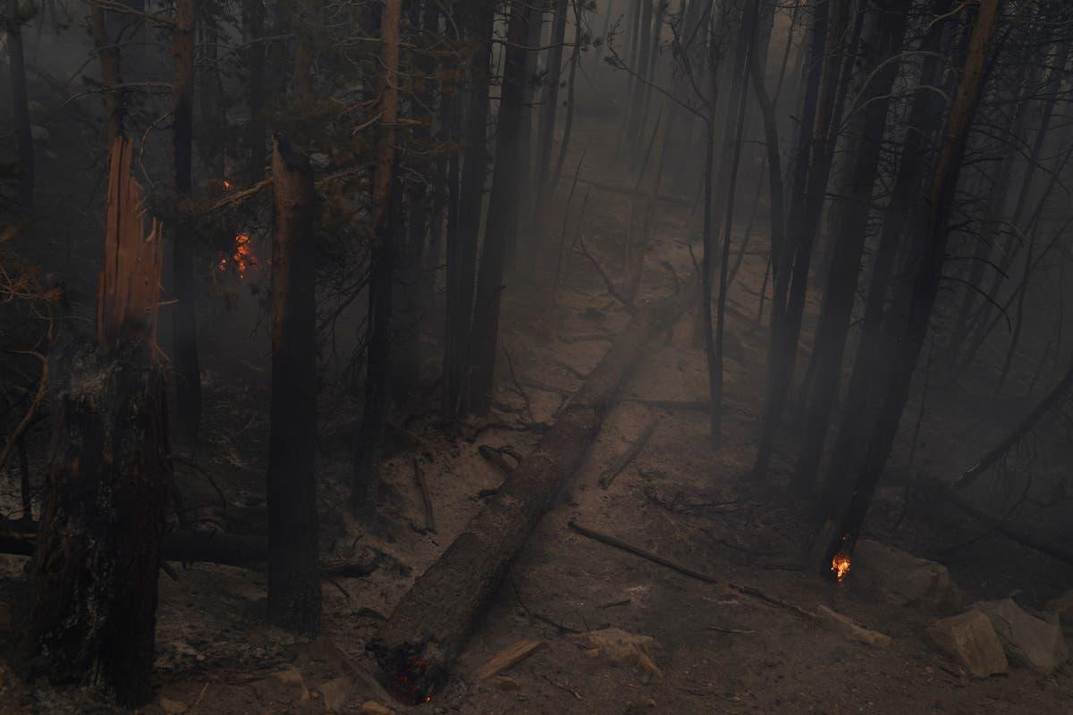Firefighter assigned to California blaze dies of illness