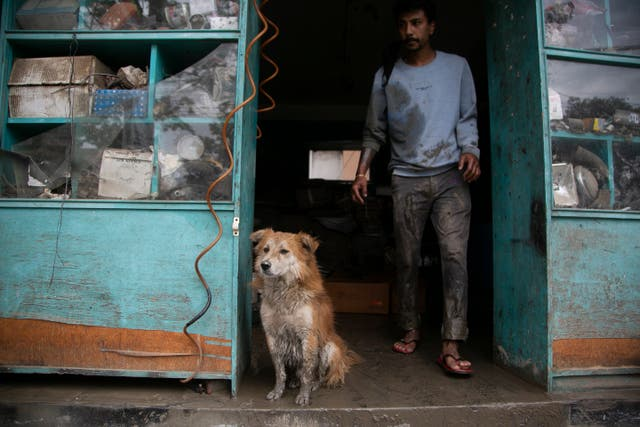 A dog sits on the doorway as a shopkeeper clears muddy water from his shop after heavy rainfall flooded the banks of Bishnumati river in Kathmandu, Nepal