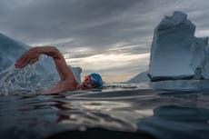 ルイス・ピューが数日間の氷のようなグリーンランドの水泳を完了し、気候危機を浮き彫りにする