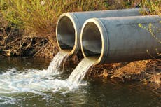 Polluters told to dump raw sewage into rivers as Brexit disrupts water treatment