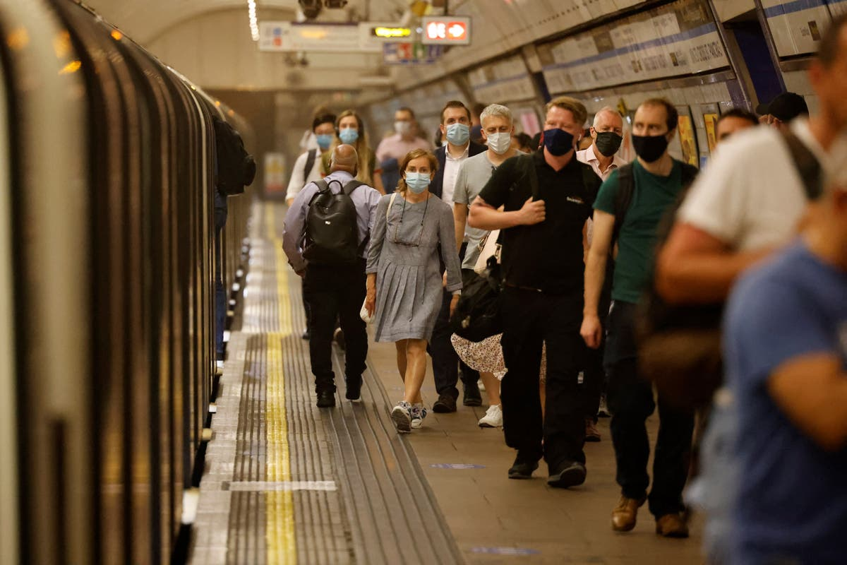 Travel expert Simon Calder to host a London Underground 'ask me anything'