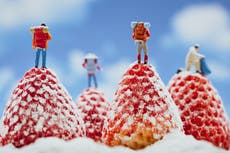 Photographer creates miniature world using fruit, veg and household objects
