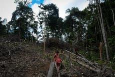 Registro 227 land and environmental defenders murdered in 2020