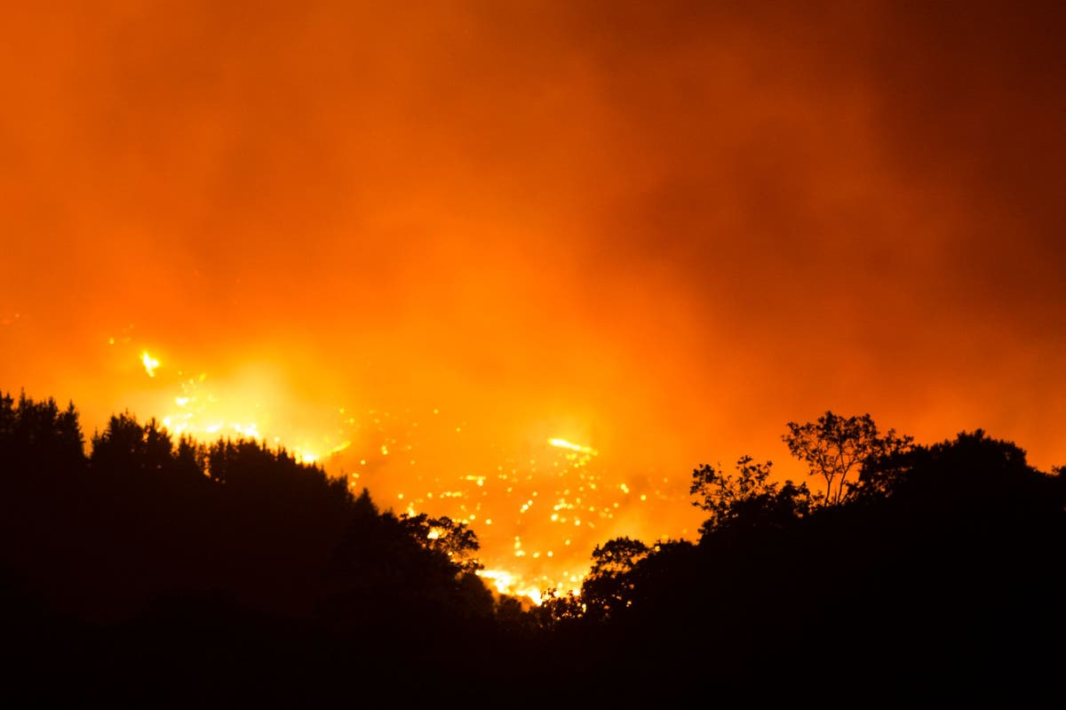 Spain wildfire: Thousands flee from huge blaze on Costa del Sol