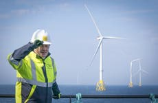 Government pledges £265m more each year to support renewable energy