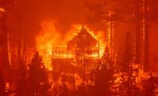 CO2 -uitstoot van veldbrande het hierdie somer rekordhoogtes bereik, satellietdata wys