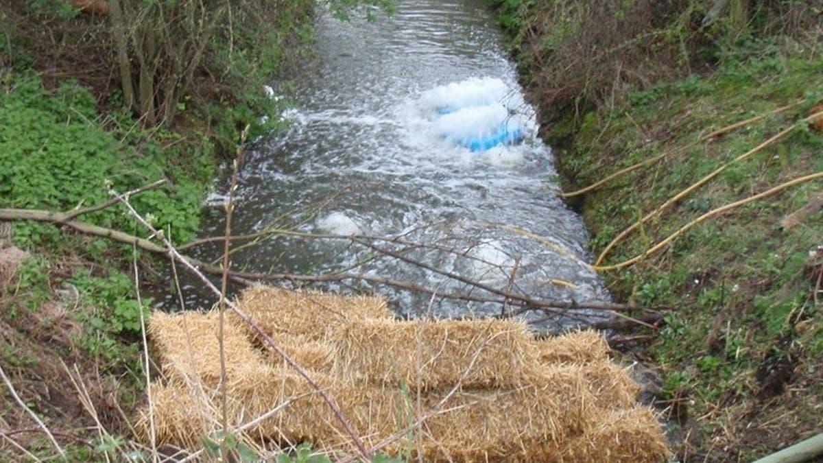 污水涌入附近的自然保护区后约克郡水公司被罚款