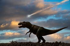 The dinosaur-ending meteorite did much more to our planet