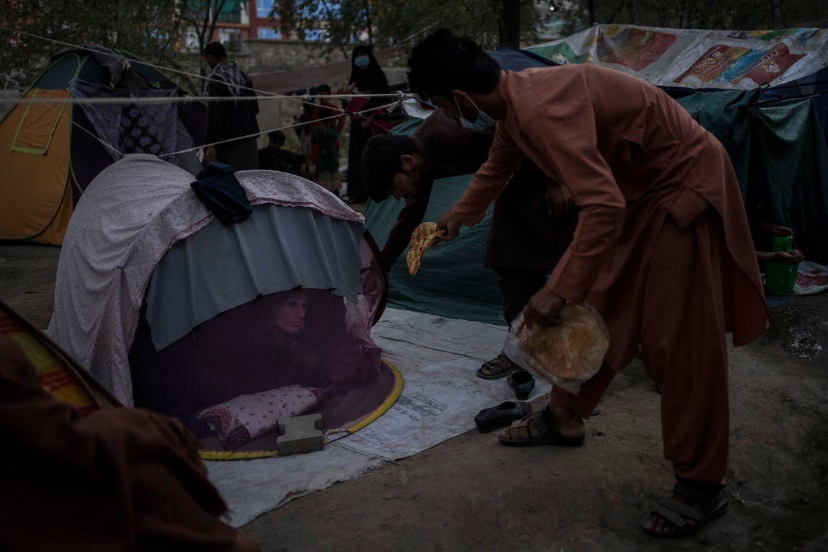 AP-intervju: UN refugee chief says Afghan stability needed