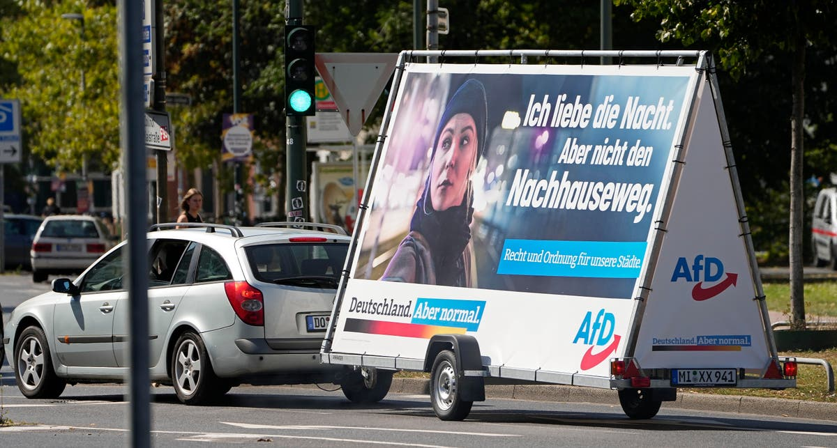 Sidelined by rivals, Germany's far-right AfD bides time