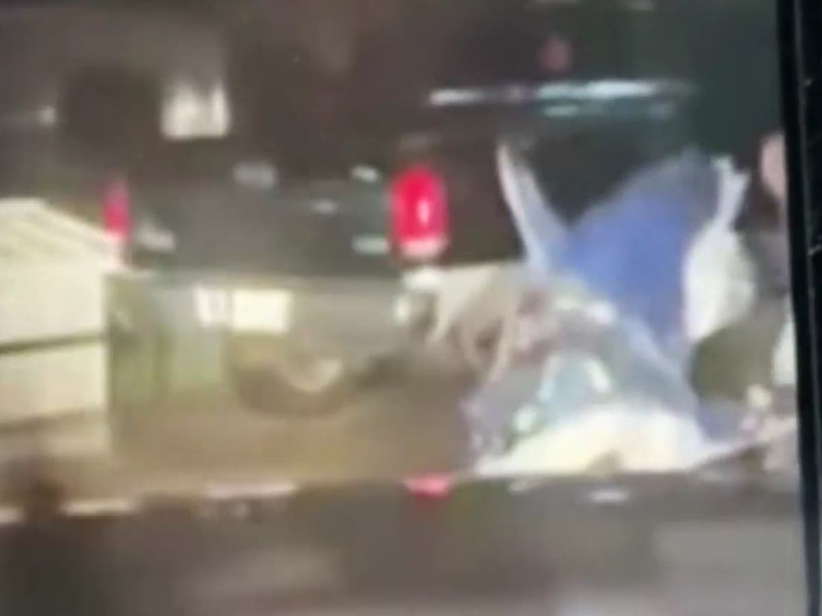 Bizarre flying shark captured in footage of storm Nicholas devastation