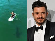 Orlando Bloom paddleboards next to great white shark in incredible video