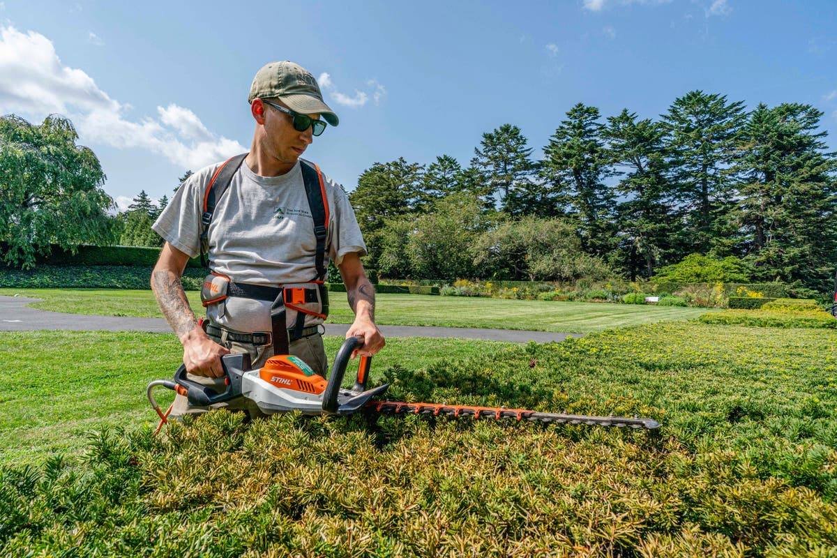 Blowers, mowers and more: American yards quietly go electric