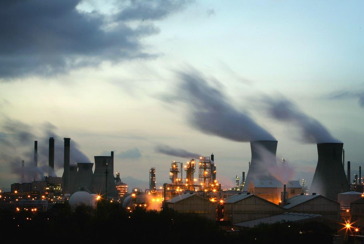 企業がグリーンウォッシング法をクリーンアップするための新年の締め切り