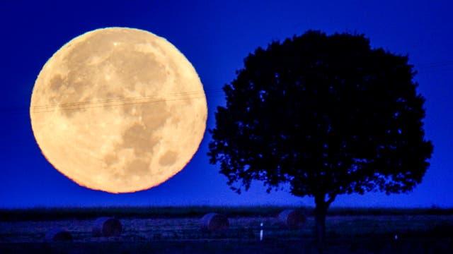 The full moon sets behind the hills of the Taunus region near Wehrheim, Tyskland