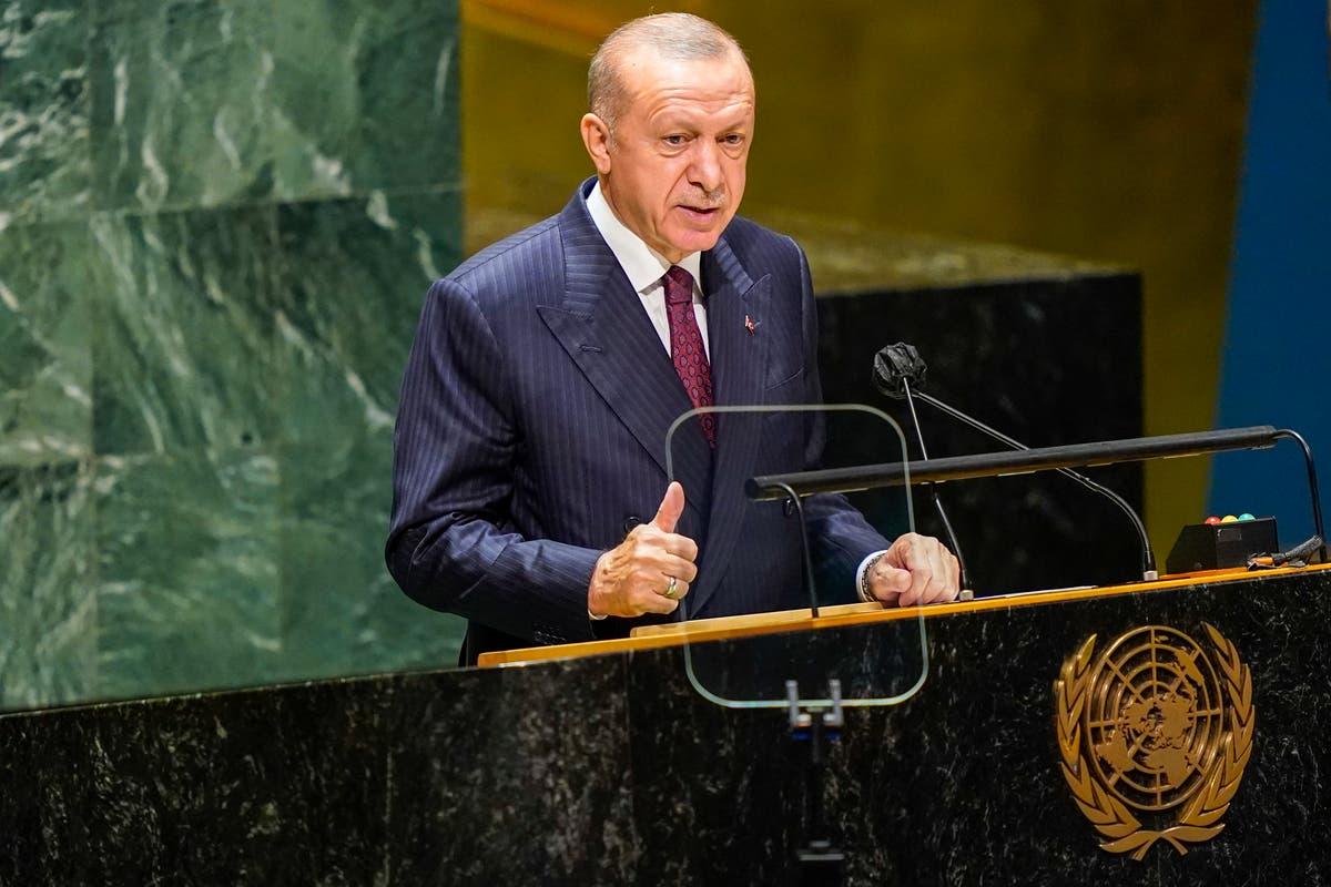 Turkey's Erdogan: Crise de refugiados da mudança climática chegando