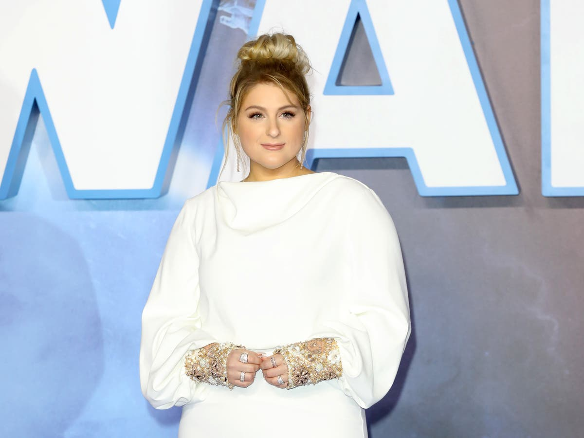 Meghan Trainor shows fans video of her side-by-side toilets