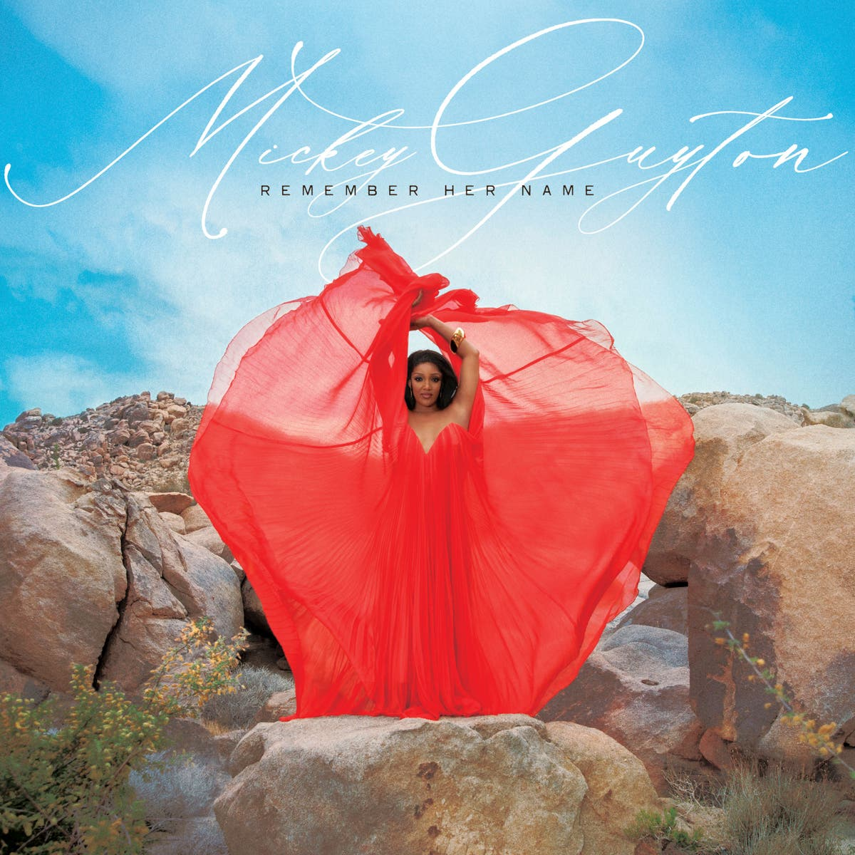 Revoir: Mickey Guyton soars on her powerful, personal record