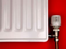 Plan to phase out gas boilers by 2035 doesn't go far enough, climate campaigners warn