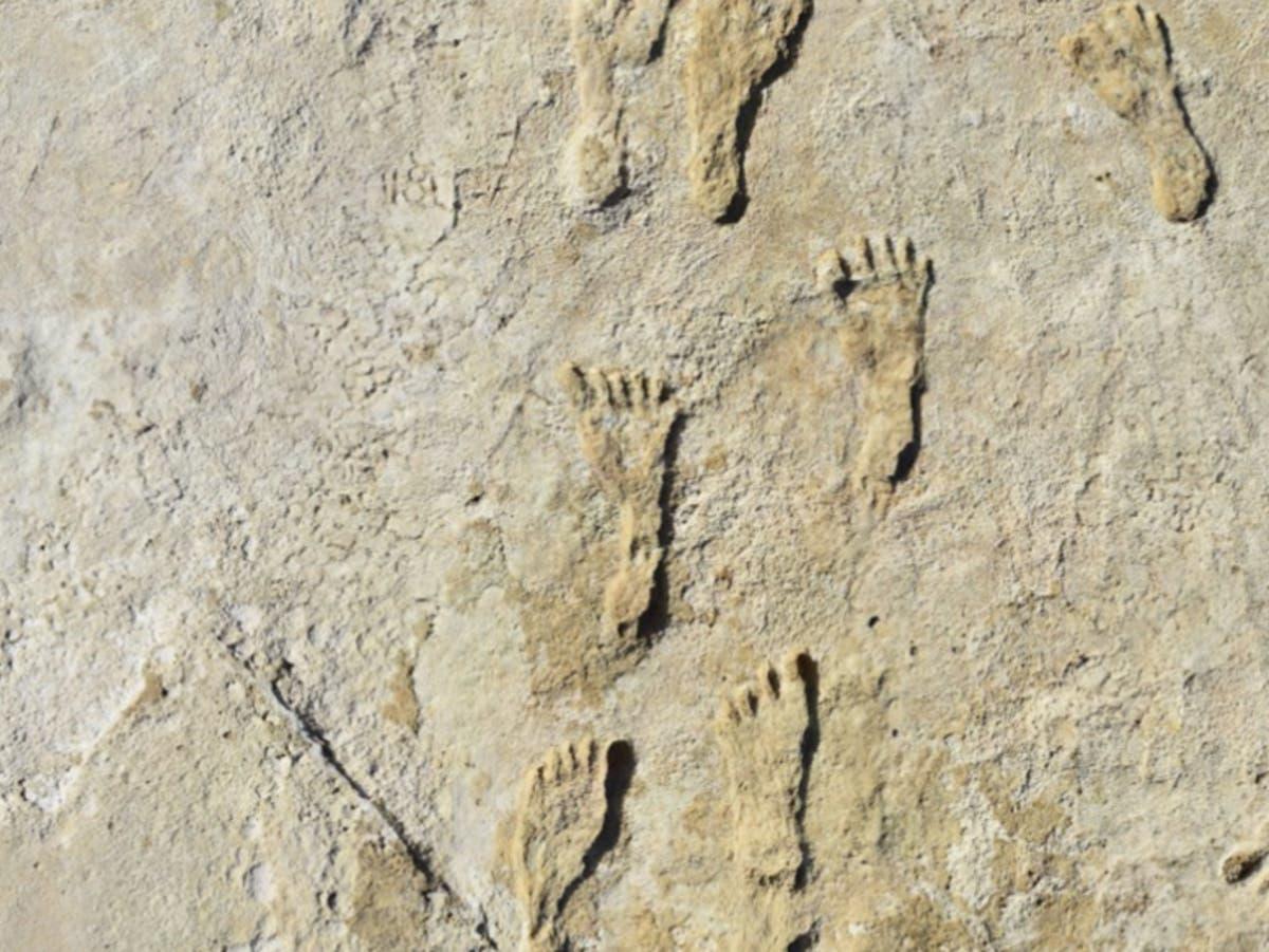Fossile fotavtrykk viser mennesker i Nord -Amerika 11,000 år tidligere enn trodd