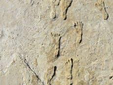 Des empreintes fossiles montrent des humains en Amérique du Nord 11,000 ans plus tôt que prévu