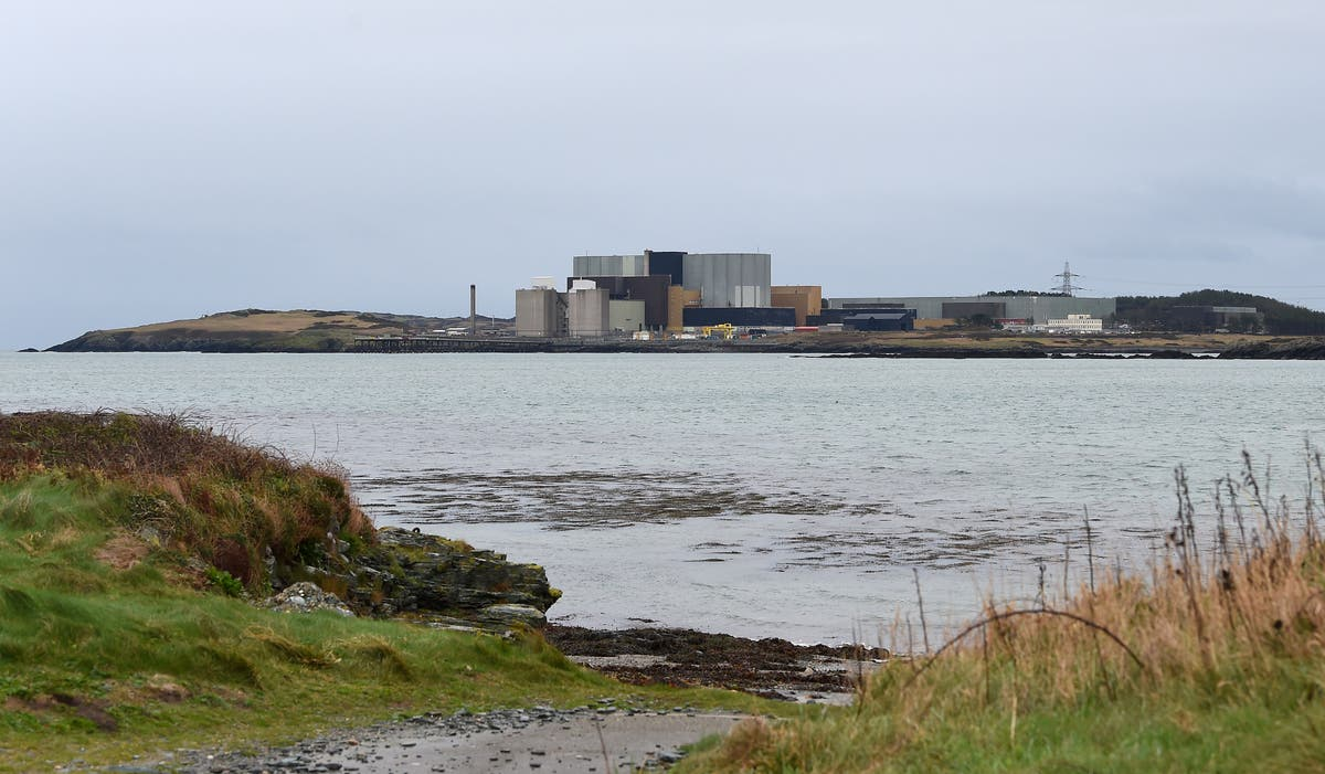 Ministers backing plans for another new nuclear power plant