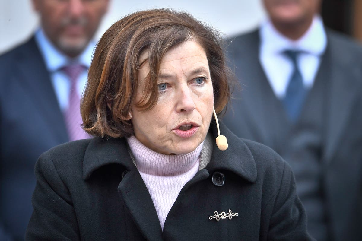 French minister: No mystery submarine deal came as 'a shock'