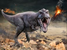 Rise of dinosaurs was driven by volcanoes powering climate change