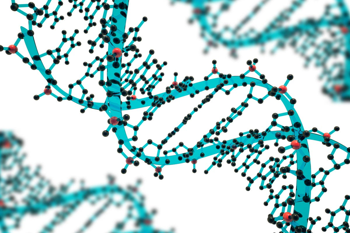 What is gene editing and how could it be used to develop new food crops?