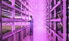 World's largest vertical farm to be built near Bristol