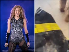 Shakira says wild boars attacked her and tried to steal bag and phone in Barcelona