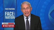 Dr Fauci says 'too soon to tell' if Christmas can go ahead as normal this year