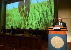 Nobel Prize won by scientists who unlocked fundamental way we understand the world