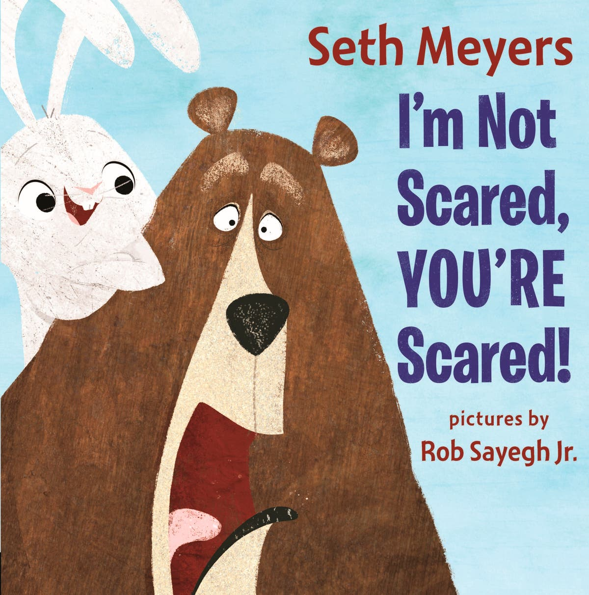 Bear and Hare: Seth Meyers picture book is an animal tale