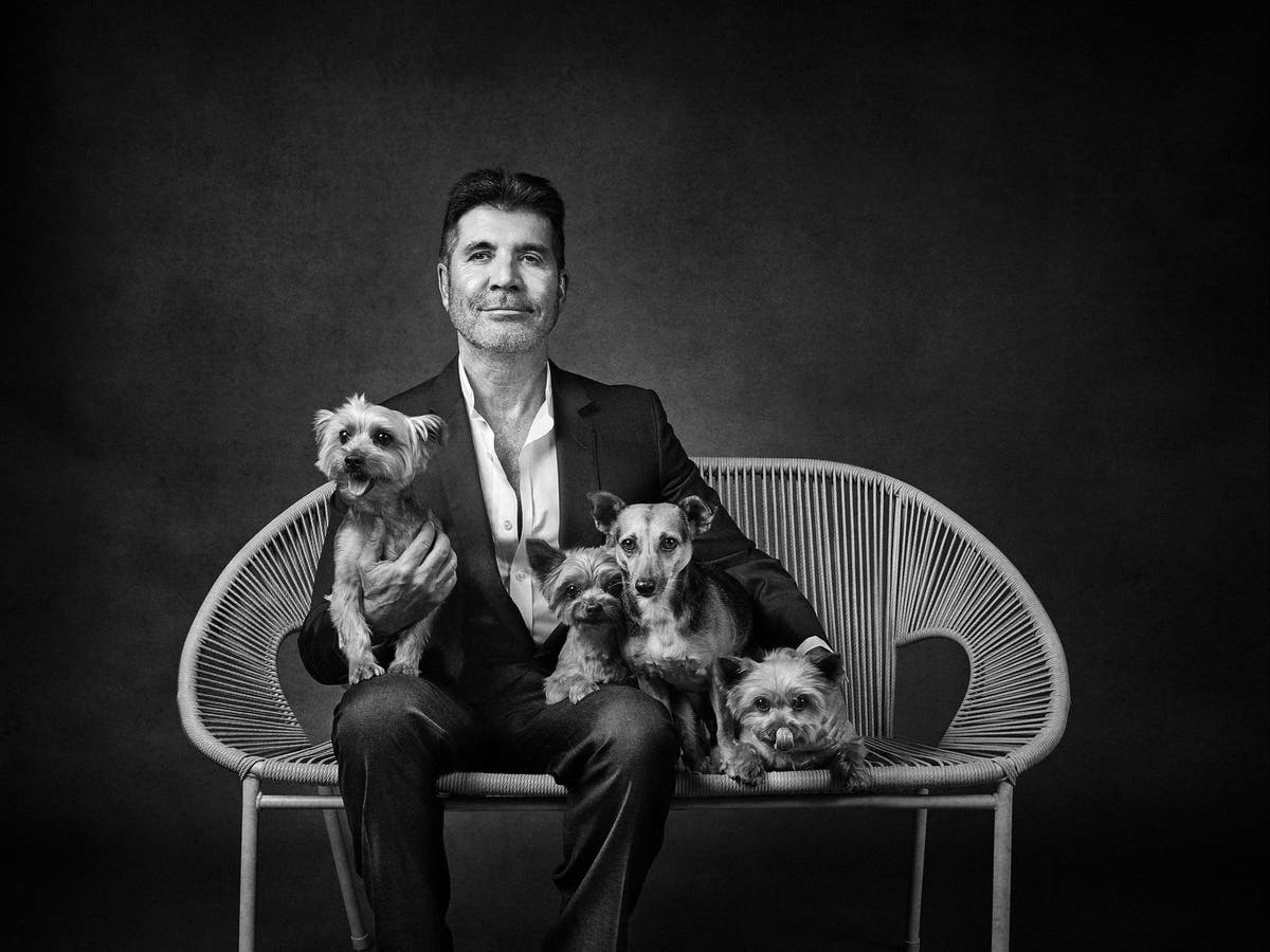 Celebrities pose with their dogs to raise money for charity