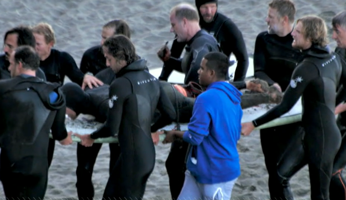 Surfer punches great white shark and barely survives but will paddle back out there