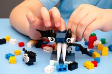 Opinion: Well done, Lego – there is no such thing as 'girl' and 'boy' toys