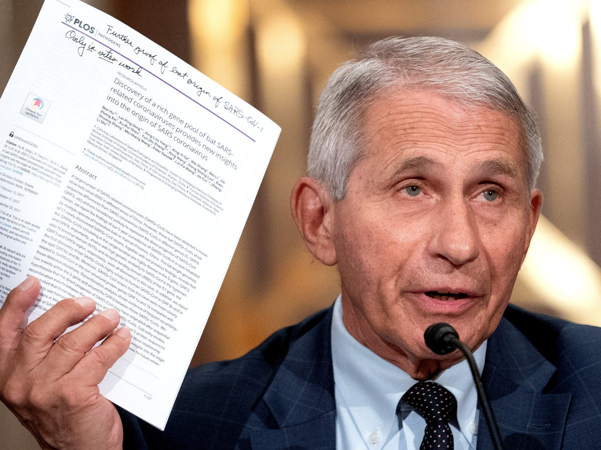 'The slope is going down': Fauci gives optimistic prediction on Covid