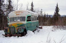 'Into the Wild' bus now open to public as conservation work continues
