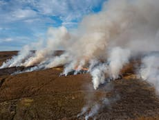 Outrage as peatlands on grouse estates burn weeks ahead of crucial climate talks